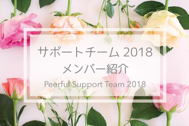 サポートチーム2018紹介